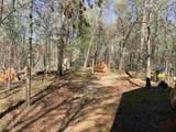 1690 Dean Mountain Rd - Photo 30