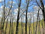 238 Walnut Ridge - Photo 4