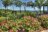 95 Greenfield Ridge - Photo 21