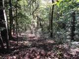 21 Soque Wilderness Road - Photo 18