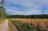 0 Creekside Dr - Photo 3