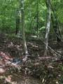 0 Long Mountain Trl - Photo 5