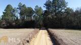 0 Henry Strickland Cemetery Road - Photo 2