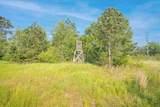 23109 09 Mt Gilead Road - Photo 22