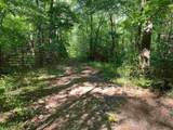 0 Oak Forest Drive - Photo 11