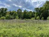 0 Corner Of Eagle Creek Farm Drive & Highway 136 - Photo 3
