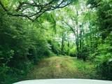 00 Roosevelt Highway - Photo 2