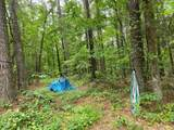 1582 Overlook Trail - Photo 35