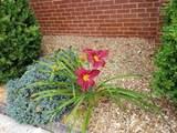 359 Virginia Pl - Photo 21