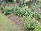 2080 Plantation - Photo 7