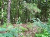0 Leguin Mill Road - Photo 3