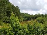LOT 29 Spring Creek Road - Photo 1