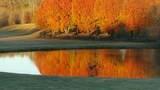 5235 Suwanee Dam Road - Photo 90