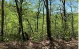 0 Winchester Cove - Photo 1