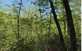 0 Winchester Cove - Photo 11