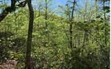 0 Winchester Cove - Photo 12