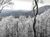 741 Wilderness - Photo 37