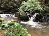 9310 Redbud Pass - Photo 15