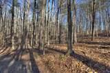0 Mount Sequoyah Road - Photo 10