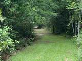 4934 Horseshoe Circle - Photo 2