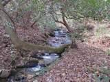 42 Huckleberry Way - Photo 39