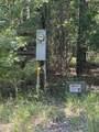 1240 Cypress Point Lane - Photo 43
