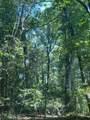 1240 Cypress Point Lane - Photo 44