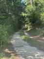 1240 Cypress Point Lane - Photo 48