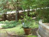 1362 Gold Valley Road - Photo 16