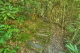 611 Wilderness Vw - Photo 33