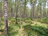 0 Old Indian Springs Road - Photo 6