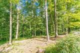 252 Nature Trail Road - Photo 21