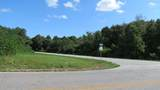 0 Pea Ridge Road - Photo 5