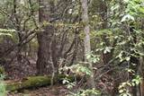 0 Trotters Ridge - Photo 12