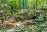 0 Brushy Mountain Road - Photo 9