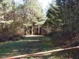 0 Booger Branch Spur - Photo 13