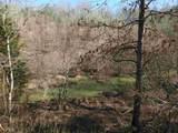 0 Booger Branch Spur - Photo 18