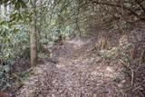 0 Woods - Photo 10