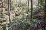 0 Woods - Photo 11