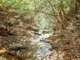 0 Woods - Photo 4