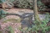 0 Woods - Photo 7