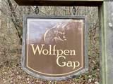 0 Wolfpen Gap Court - Photo 6