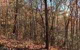 LOT 49 Fires Creek Cove - Photo 3
