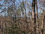 33.71 Acres - Rocktree Rd - Photo 13