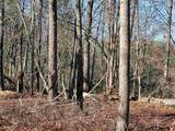 33.71 Acres - Rocktree Rd - Photo 15