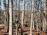 33.71 Acres - Rocktree Rd - Photo 16