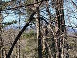 33.71 Acres - Rocktree Rd - Photo 4