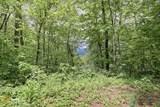 0 Deep Woods - Photo 7