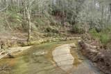 0 Coon Creek Road - Photo 11