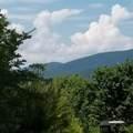 2245 Ivy Mountain Road - Photo 2